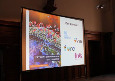 Prof Flitsch presented at the 29th Joint Glycobiology meeting 2018, 21- 23 Oct 2018, Ghent. For more photos see here https://www.facebook.com/pg/VIBLifeSciences/photos/?tab=album&album_id=2323653540992722